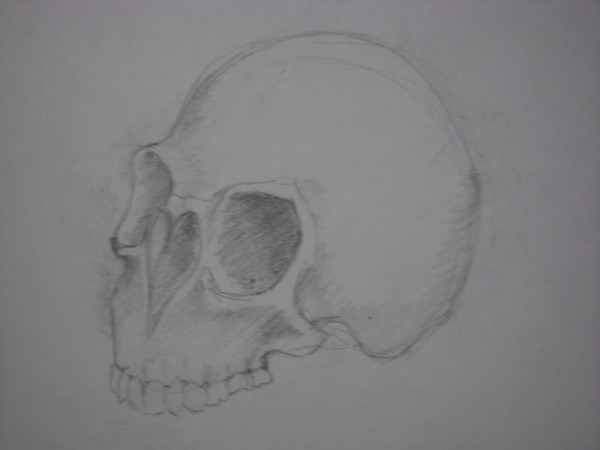 heart skull
