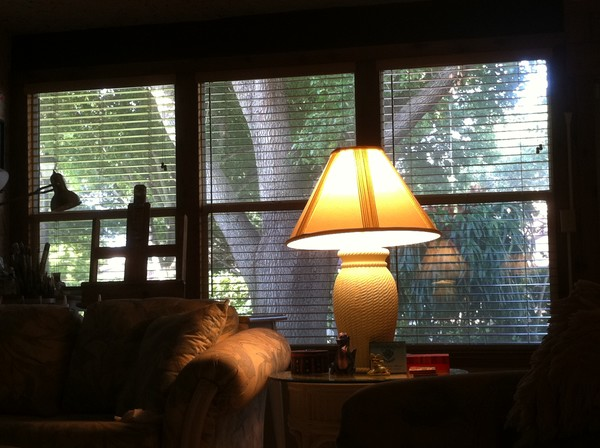 View from My Couch