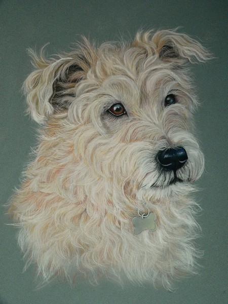 Terrier in Pastel - Rocky