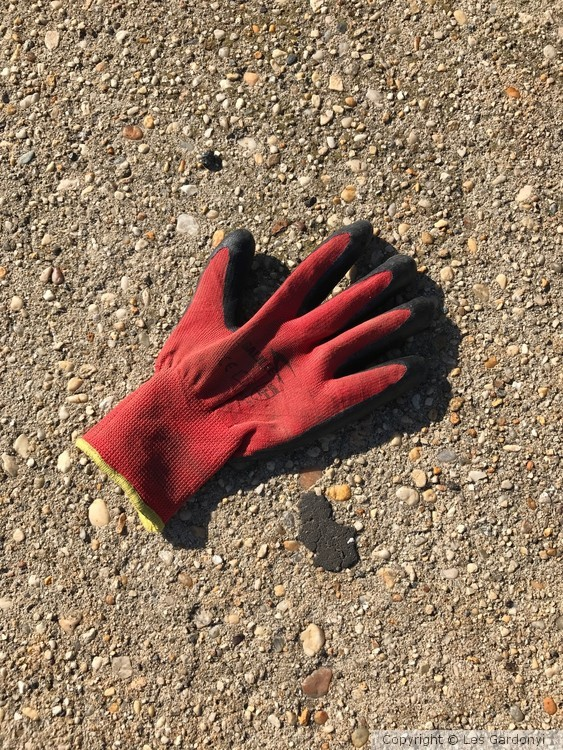 Lost shadowy red Glove