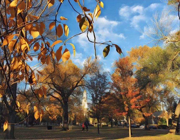 Fall on The Green