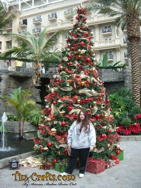 Christmas at Gaylord Palms Resort