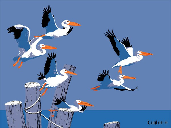 Pelicans Seascape Beach Painting