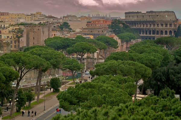 The Colosseum and Palatine