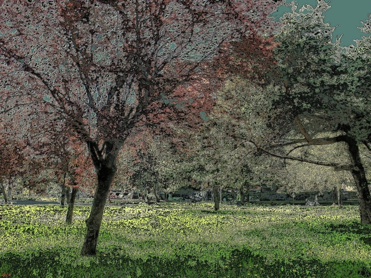 Parco saval
