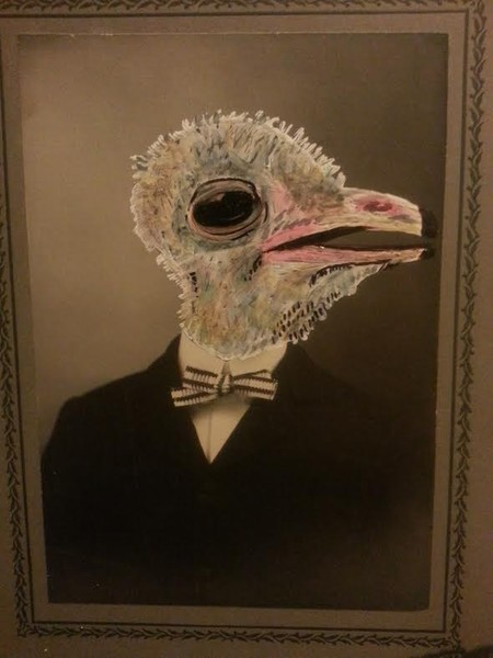 Dapper Ostrich