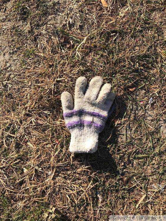 Lost purple-striped Glove