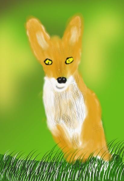O417 Fox Pup