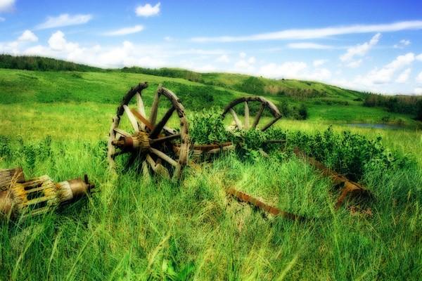 Prairie Dreams