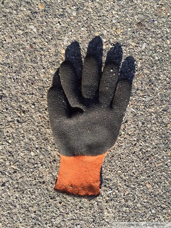 Lost custic-cleanup glove