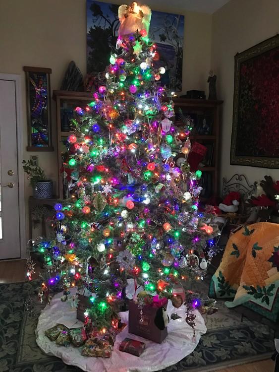 Christmas Tree in Lexington