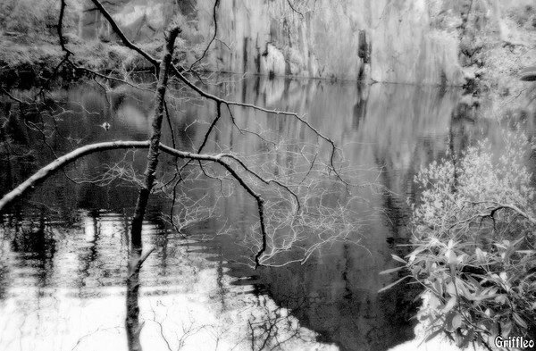 REFLECTIONS IN AN OLD QUARRY