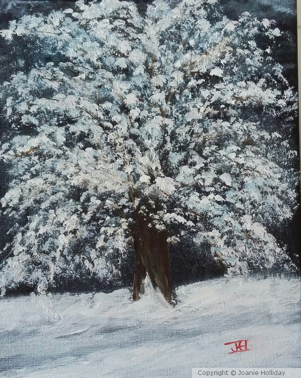 WINTER STORM,   OIL