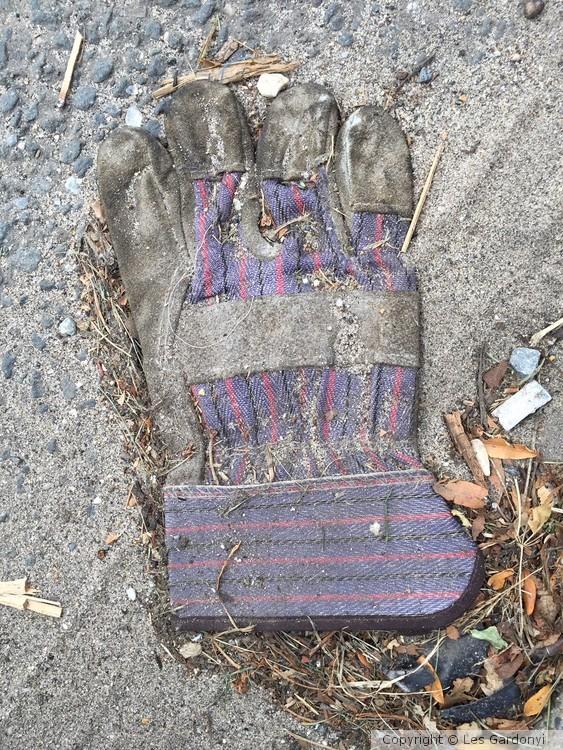 Lost Fat Glove