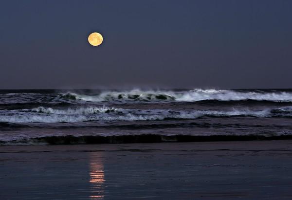 Pre Dawn Moon