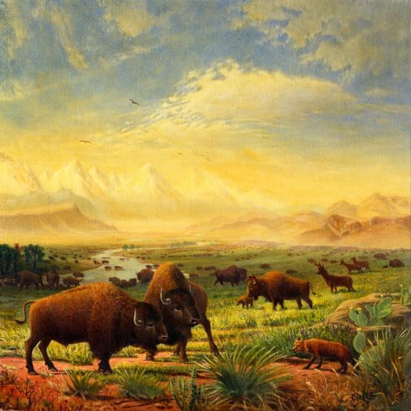 Square Art - Buffalo Fox Great Plains Landscape