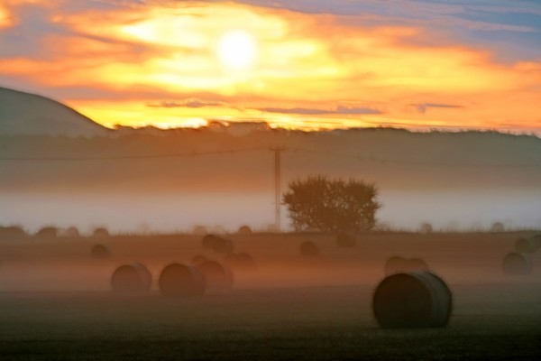 Haybales at sunrise