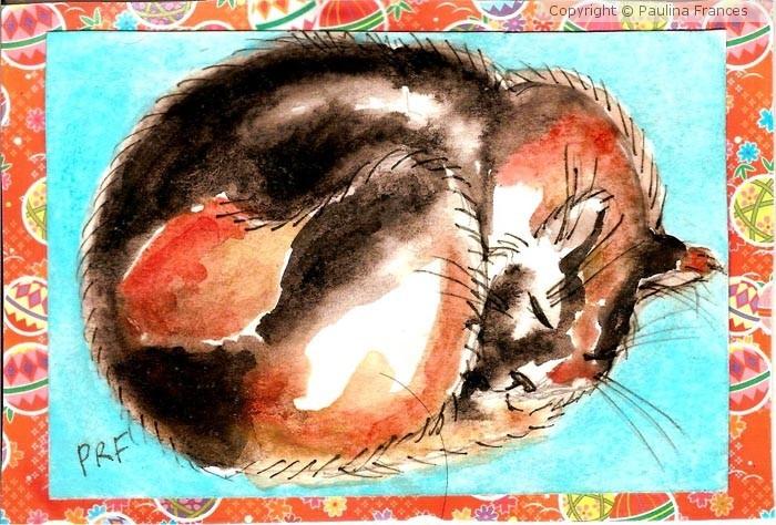 Basti Catnapping