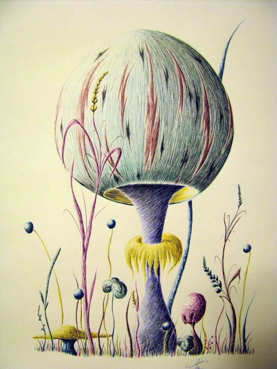 Mushroom with a Collar