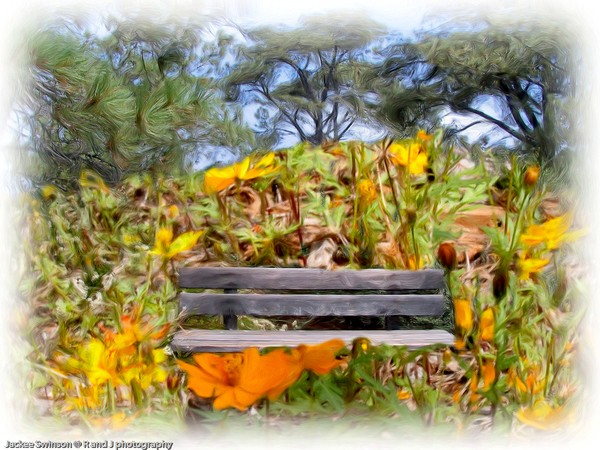 Bench Flowers Oil