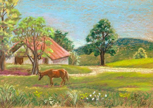 Abram's Farm