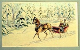 Sleigh Ride by Jan Szabo