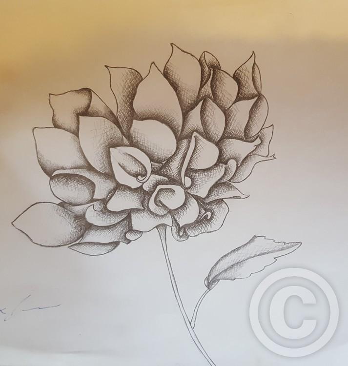 Grayscale Flower