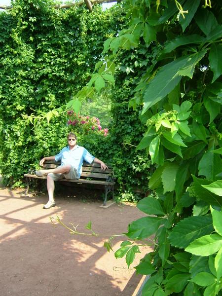 Hide and Seek in the rose garden