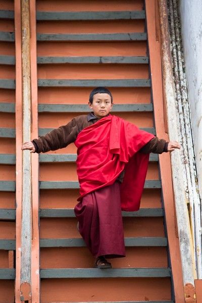 Young Monk On Stairs