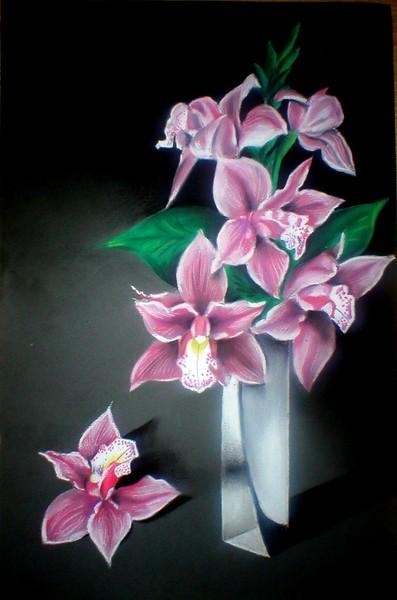Orchids (Orhideje)