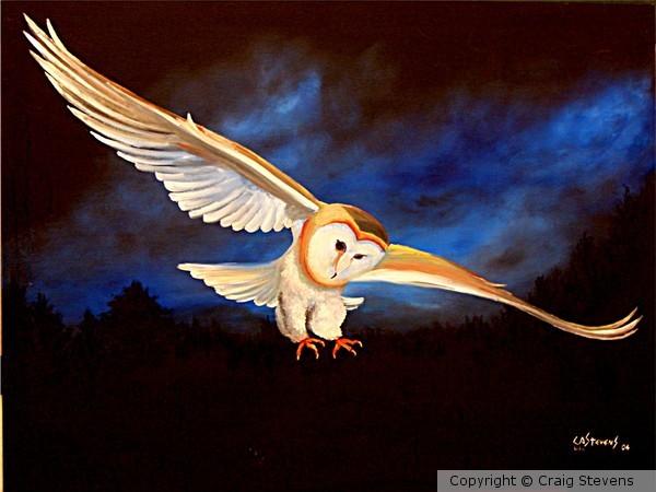 Owl For Zoo School in Nashville