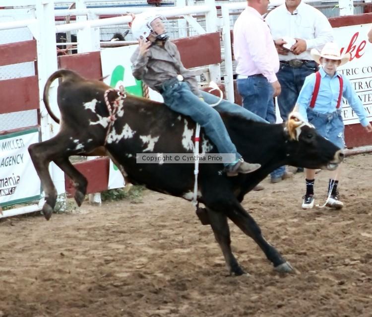 Calf Riding