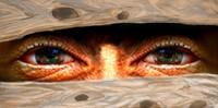 THEME: Eyes
