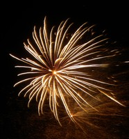 THEME: Fireworks Photography