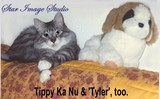 TIPPY KA NU & TYLER, TOO