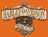 EMBLEM--HARLEY-DAVIDSON