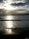 Sun Tide