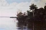 by Soul-of Cuba