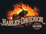 HARLEY-DAVIDSON MENS TEE