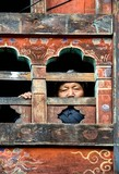 Woman At The Window, Paro