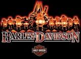 BIKER LINE--HARLEY-DAVISON