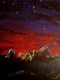 by Noelle Rollins