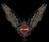 ANGEL WINGS-HARLEY-DAVIDSON