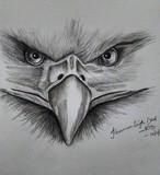 by Karamveer  Singh