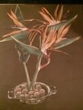 by Helene de Villiers