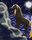 by The Black Stallion