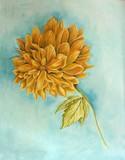 by Gail Caduff-Nash