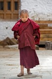 Young Monk No.1