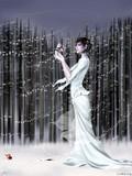 by Look Jia Wang