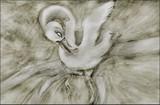 by Wanda Howe